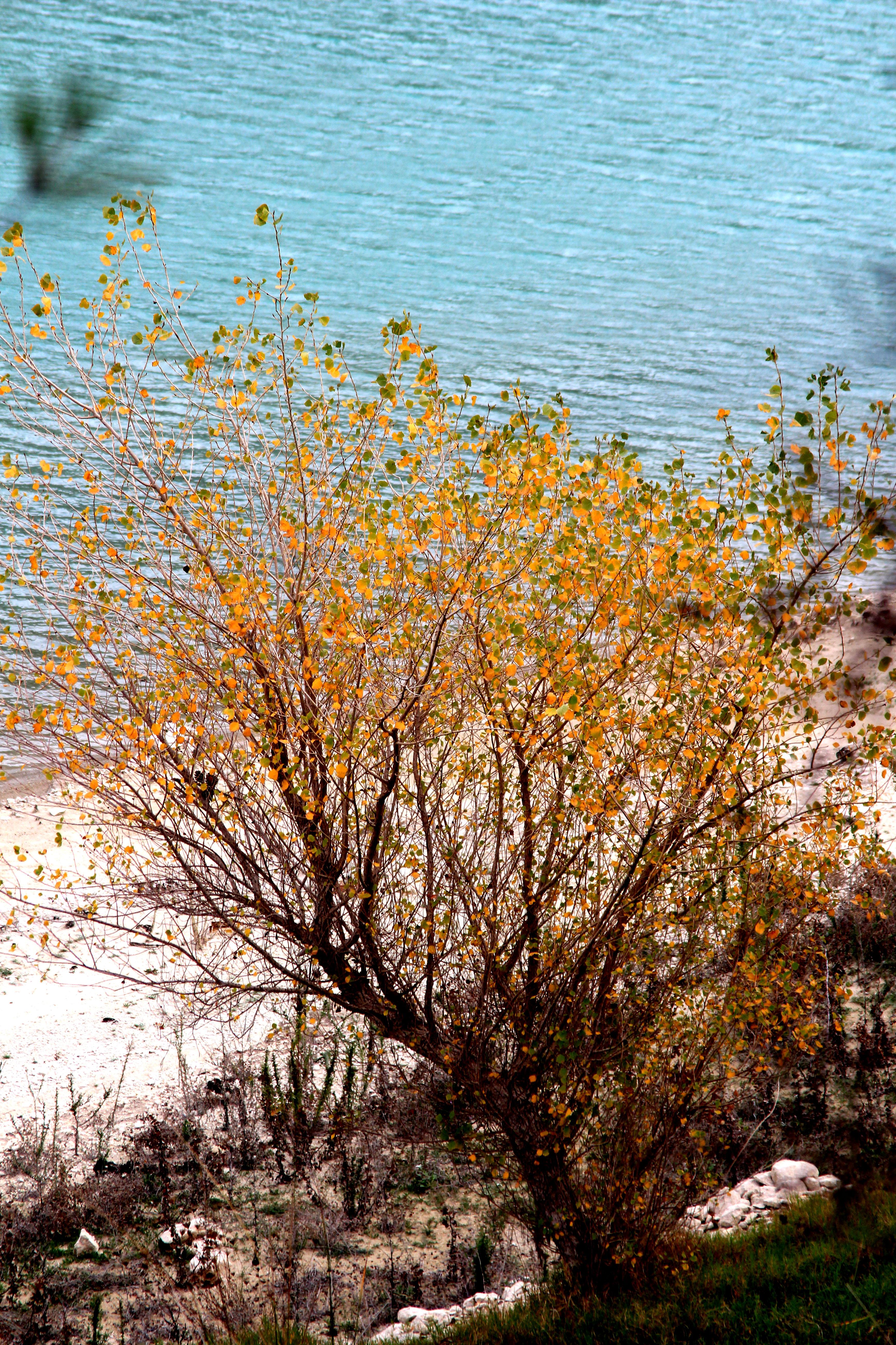 otoño Alicante_María Jesús Mora_ Arquitecta 4