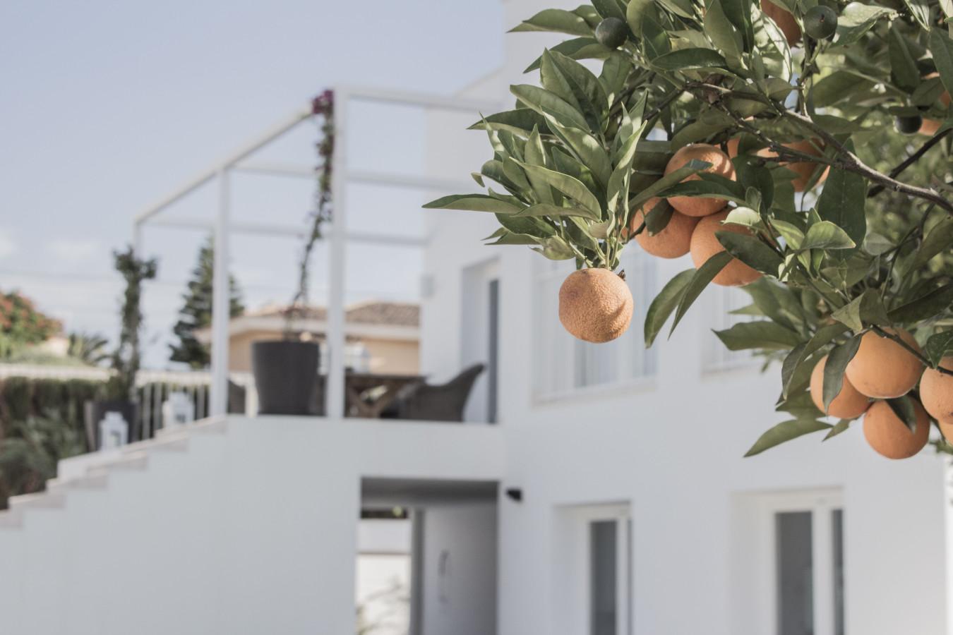 Vivienda Alfaz del Pi_María Jesús Mora_Arquitecto_Alicante 2